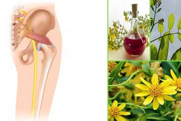 sciatica-herbs-featured